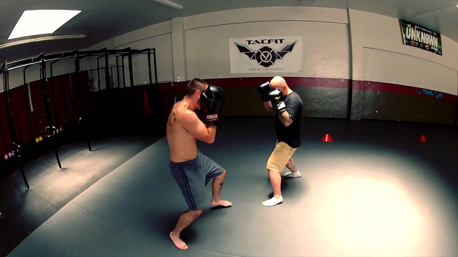 training fighters