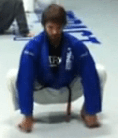 bjj_stretches_toe_touch_squat