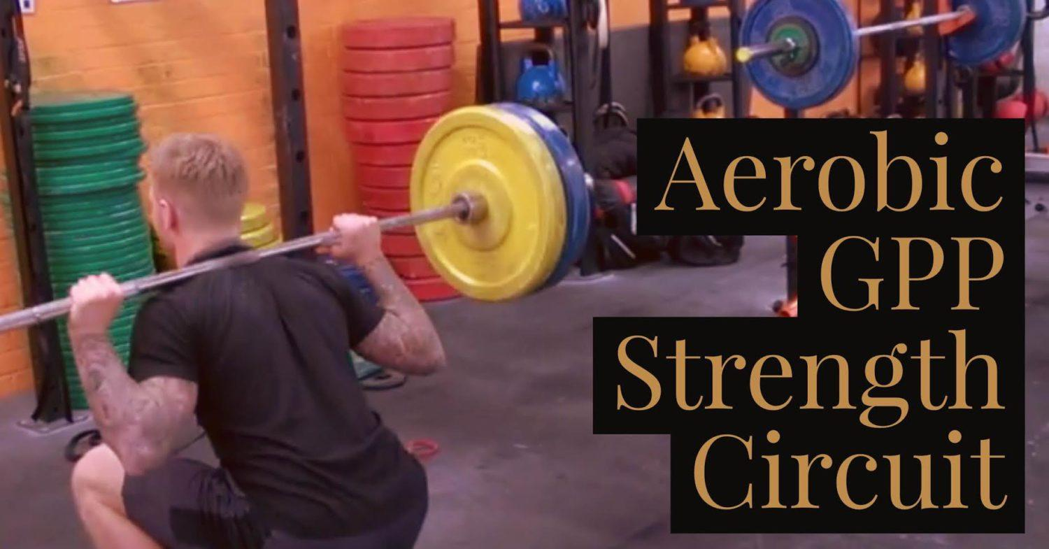 Aerobic GPP Circuits for Fighters