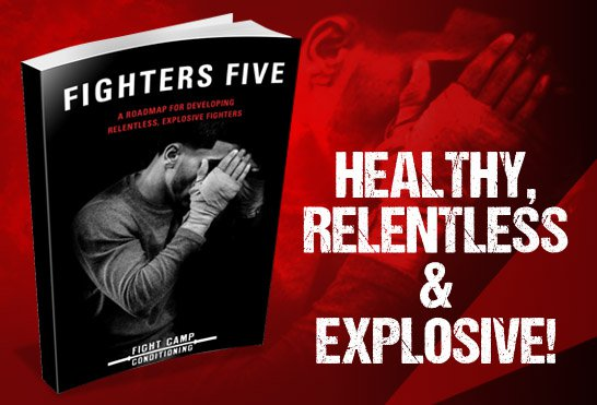 Fighters_FIVE_ebook